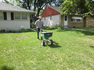 Lawn Fertilization.  Crystal, MN
