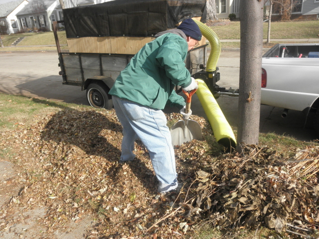Fall Clean Up Crystal, MN