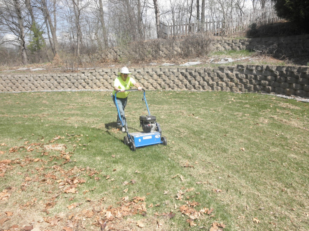 Power Raking / Dethaatching.  Spring Clean Up Golden Valley, MN