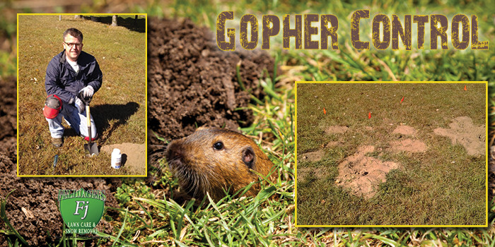 Gopher Control