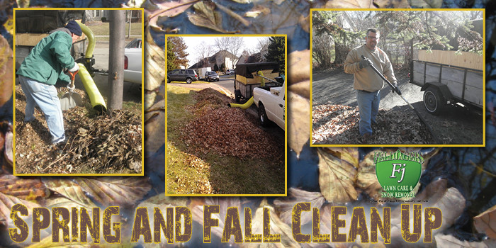 Spring and Fall Clean Up